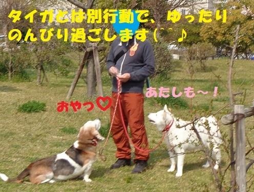 f0121712_00232703.jpg