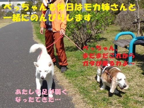 f0121712_00241819.jpg