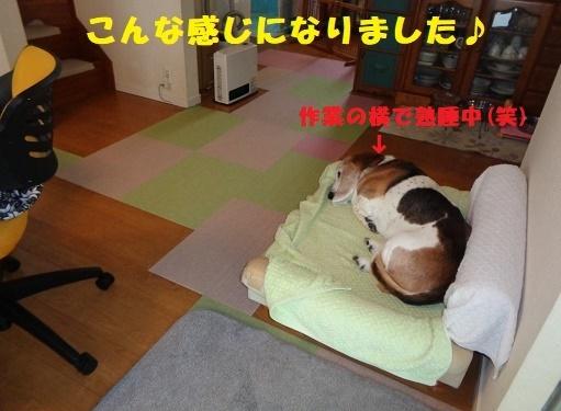 f0121712_00502533.jpg