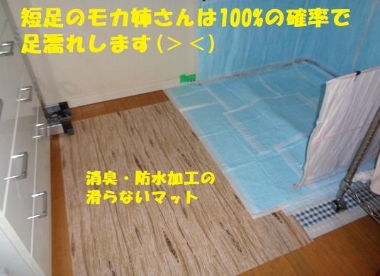 f0121712_01093766.jpg