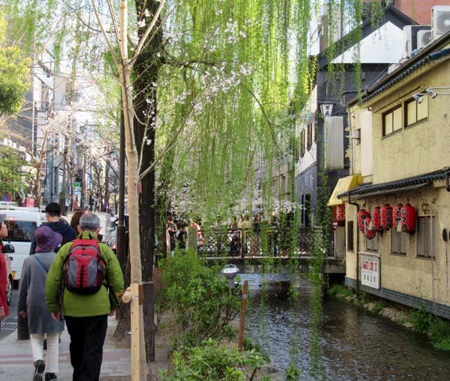 祇園新橋から高瀬川へ_e0048413_20423412.jpg