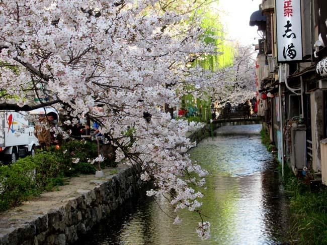 祇園新橋から高瀬川へ_e0048413_20424130.jpg
