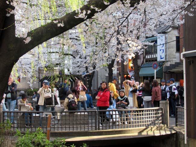 祇園新橋から高瀬川へ_e0048413_20424866.jpg