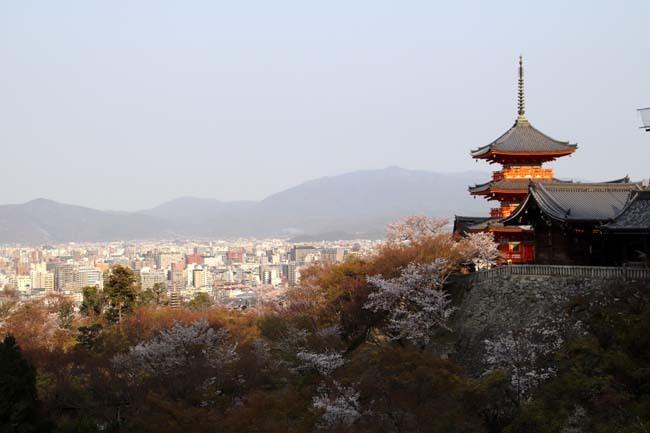 桜が揃った 清水寺_e0048413_21542456.jpg