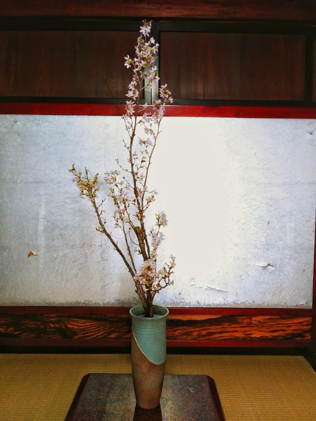 春が待ち遠しい_e0239118_17180671.jpg