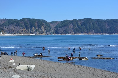 旧暦3月3日の浜一般開放に行ってきたのだ!_c0259934_09210243.jpg