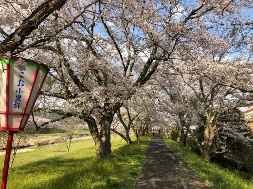 島根県三刀屋町_e0074251_15584267.jpg