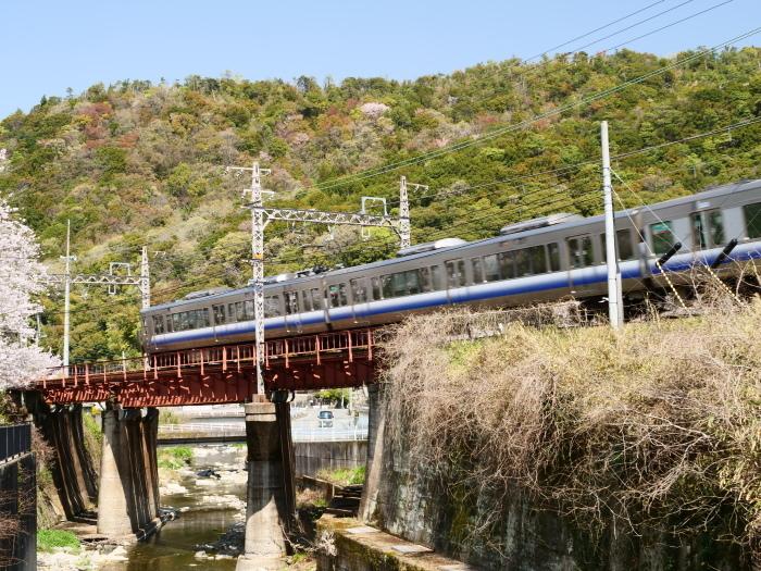 花と鉄道  2019-04-12 00:00   _b0093754_21562938.jpg