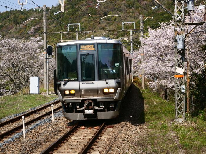 花と鉄道  2019-04-12 00:00   _b0093754_21572149.jpg