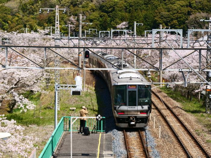 花と鉄道  2019-04-12 00:00   _b0093754_21574424.jpg
