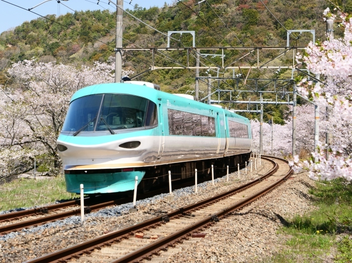 花と鉄道  2019-04-12 00:00   _b0093754_21580873.jpg