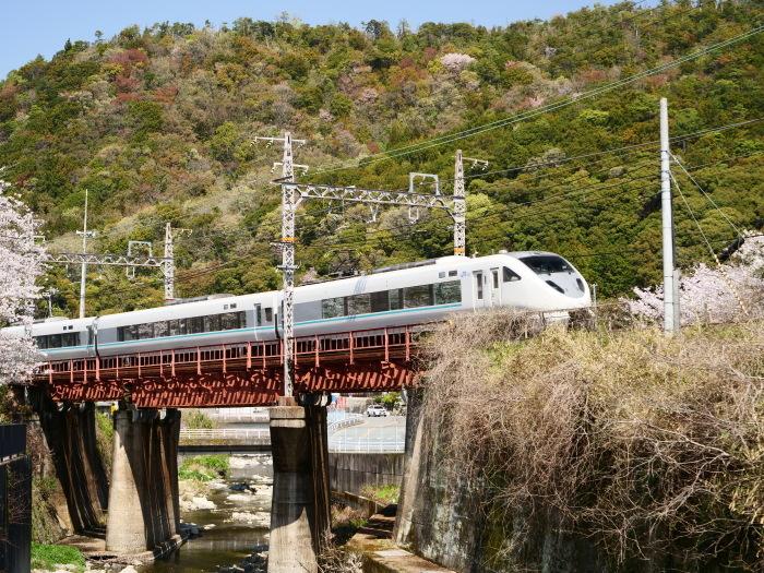 花と鉄道  2019-04-12 00:00   _b0093754_21585016.jpg