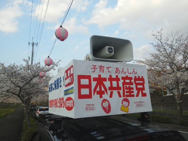 満開の桜と一緒に (*^−^)ノ 相談が続きます「やっぱり、お母さんは大変だ!」_f0061067_18082048.jpg