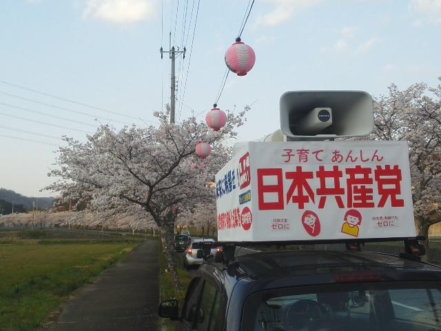 満開の桜と一緒に (*^−^)ノ 相談が続きます「やっぱり、お母さんは大変だ!」_f0061067_18082067.jpg