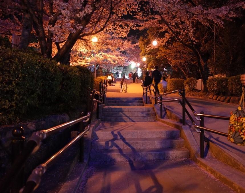 春とシュラフ_d0389370_23365543.jpg