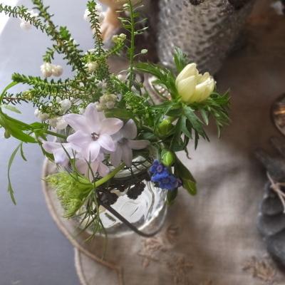 オークリーフ(新しい品種のバラ)_f0049672_18430405.jpg