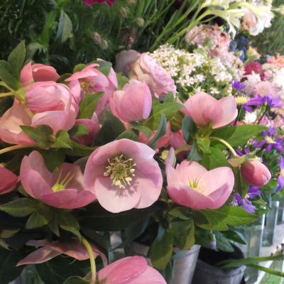 オークリーフ(新しい品種のバラ)_f0049672_18443375.jpg