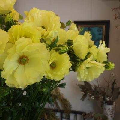オークリーフ(新しい品種のバラ)_f0049672_18451120.jpg