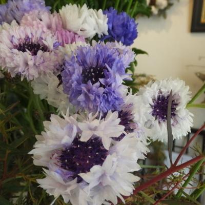オークリーフ(新しい品種のバラ)_f0049672_18451752.jpg
