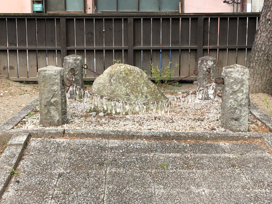勝手に桜ツアー 白石散歩アプリコース①_e0355177_19392712.jpg