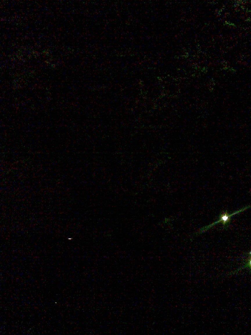 昨日ひとり花見時、ここは穴場、朝霞浜崎公園_d0061678_12391814.jpg
