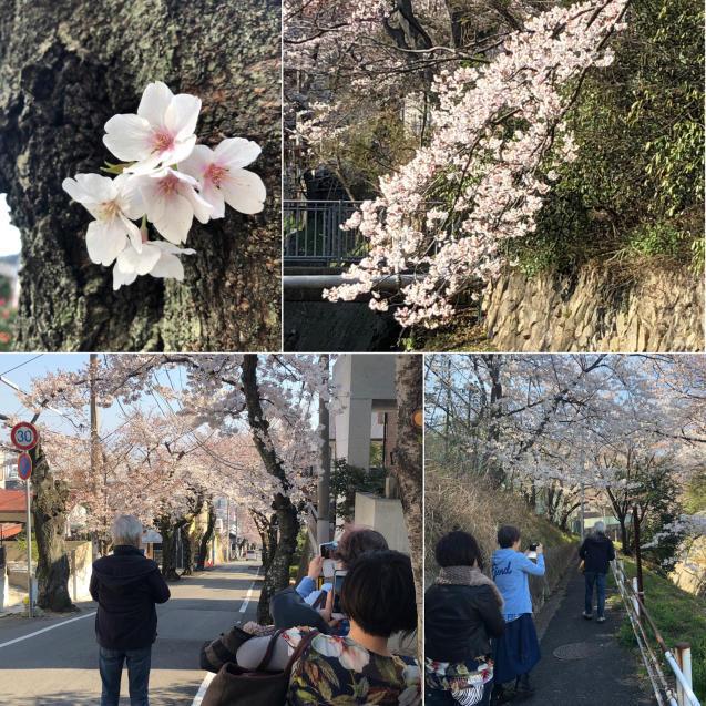 先日の@ビックアップル 渋谷さんと456 encore!ありがとうございました。_f0042307_17230750.jpg