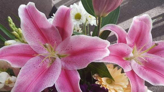Flowers..._f0126121_14542036.jpg