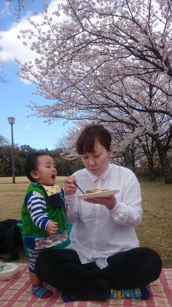 桜のした_d0180229_1822264.jpg