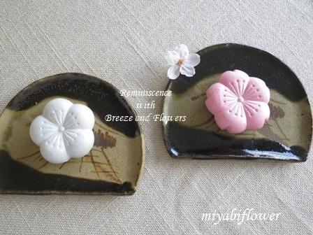 春の和菓子 とらやの「御代の春」_b0255144_00271118.jpg