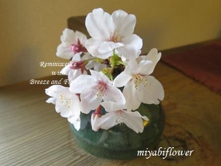 春の和菓子 とらやの「御代の春」_b0255144_01135309.jpg