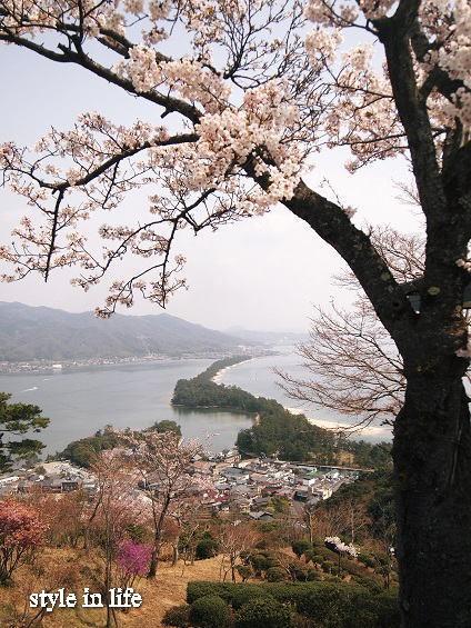 桜の季節の旅_b0150155_15392589.jpg
