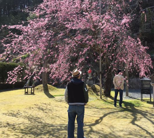 亀谷サロン〜天河神社_d0030385_10470098.jpeg