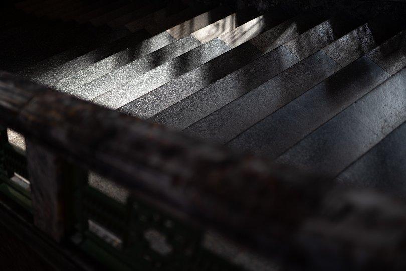 ネオバロックと戯れる光蜥蜴_d0353489_19122948.jpg