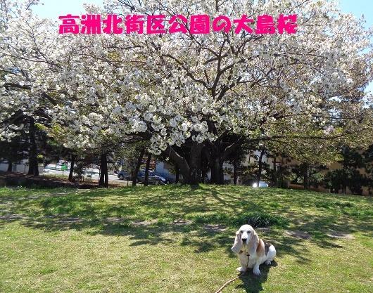 f0121712_09525809.jpg