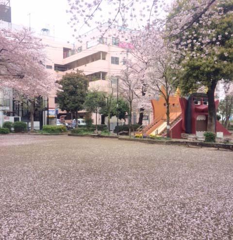 春なのに_b0206421_14210444.jpg