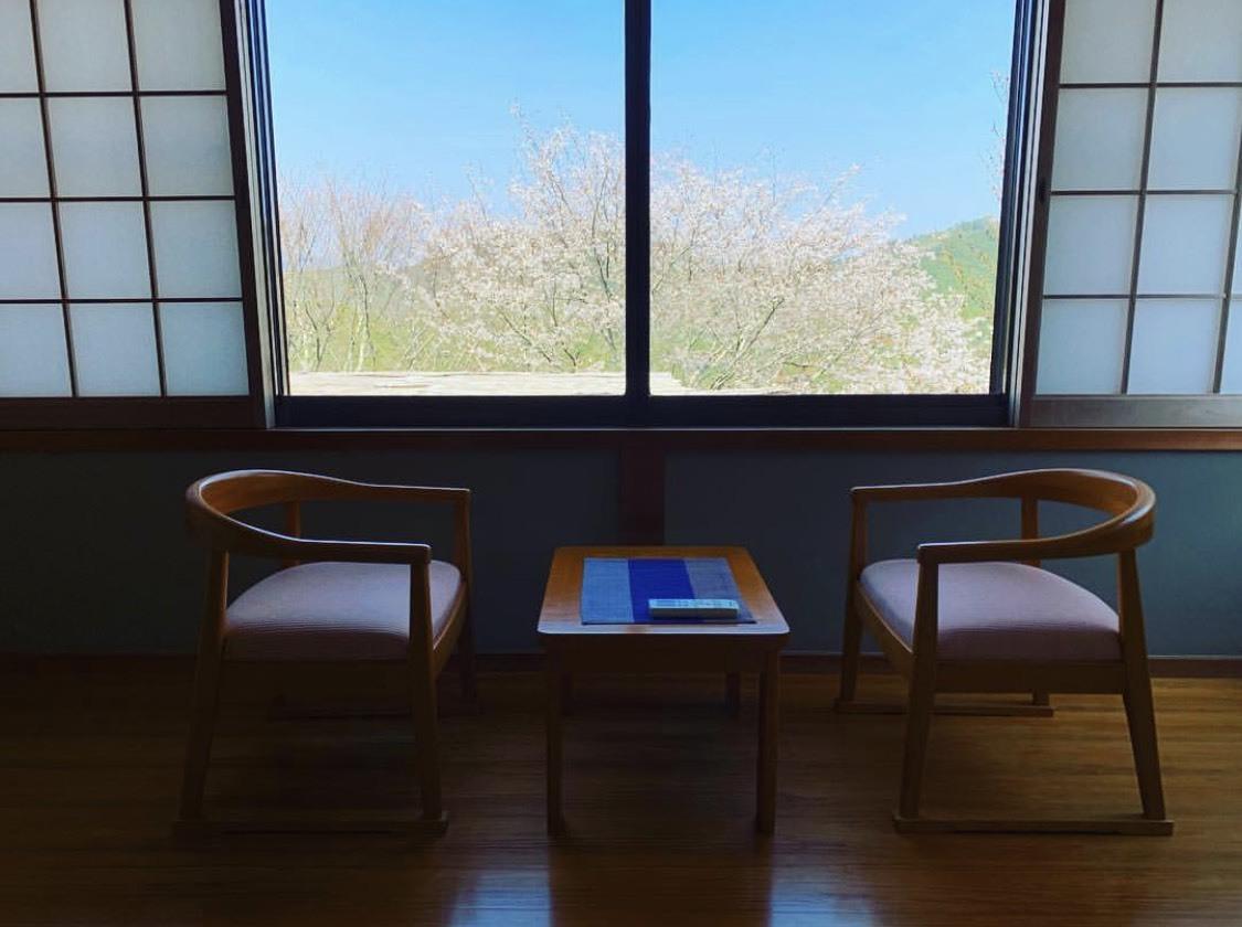どんどんと咲いてきました!吉野山の桜!_e0154524_16445170.jpg