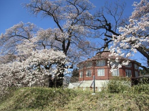 雪やこんこ      4月10日(水)_d0127634_07024026.jpg