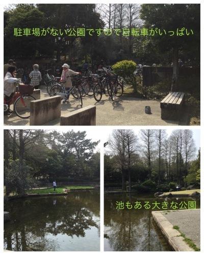 テーブルリメイク & 平成最後のお花見 & 白い紫陽花_a0084343_11250377.jpeg