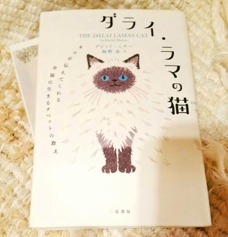 ダライ・ラマの猫 と スリランカ  カレーランチ会_a0153945_18542352.jpg