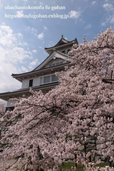 琵琶湖畔の桜散歩&今日の鶏の竜田揚げ弁当_c0326245_10531645.jpg