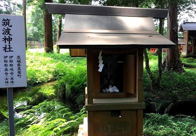 「毛野国」探訪⑥:栃木県の隠れた歴史&地下採掘場の魅力発掘(下野国編)_c0119160_19434405.jpg