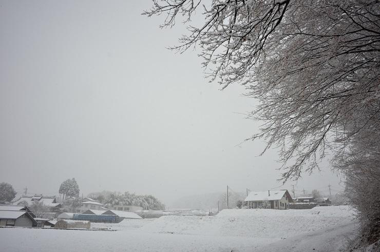 雪景色^^_a0211886_15250736.jpg
