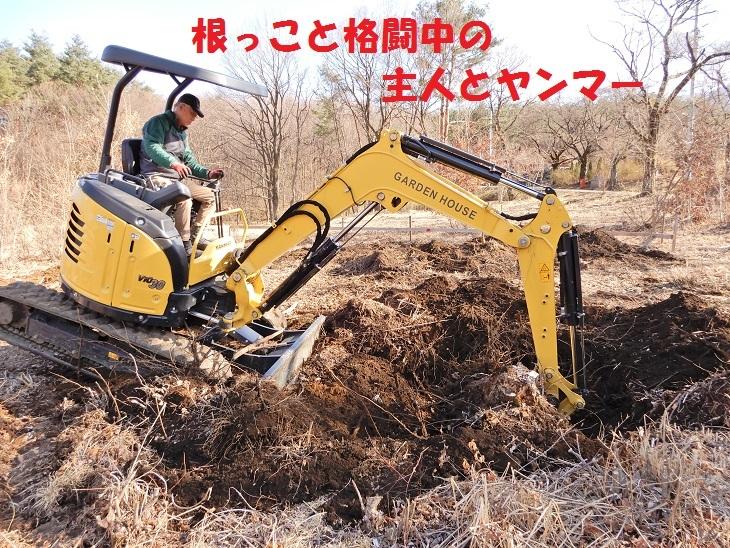 武川町F山さん邸の現場より 2_a0211886_16505862.jpg