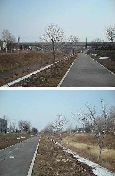 新発寒への道_f0078286_10212601.jpg
