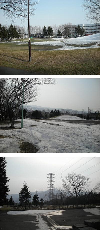 新発寒への道_f0078286_10264064.jpg