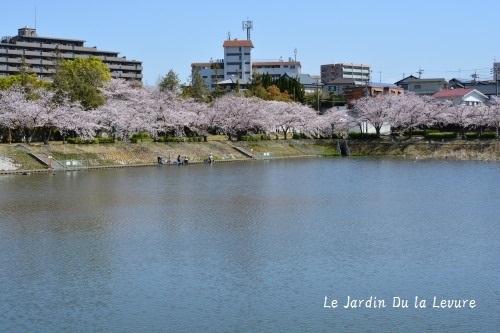 名城公園トナリノ、あさみや、パン粉まつり_f0329586_11460665.jpg
