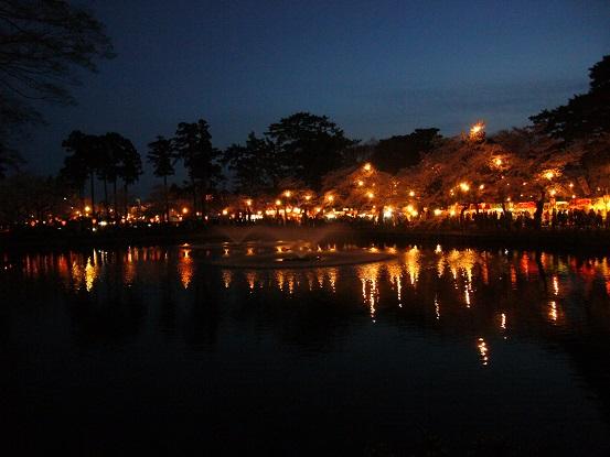 高田公園の夜桜_c0192215_925563.jpg