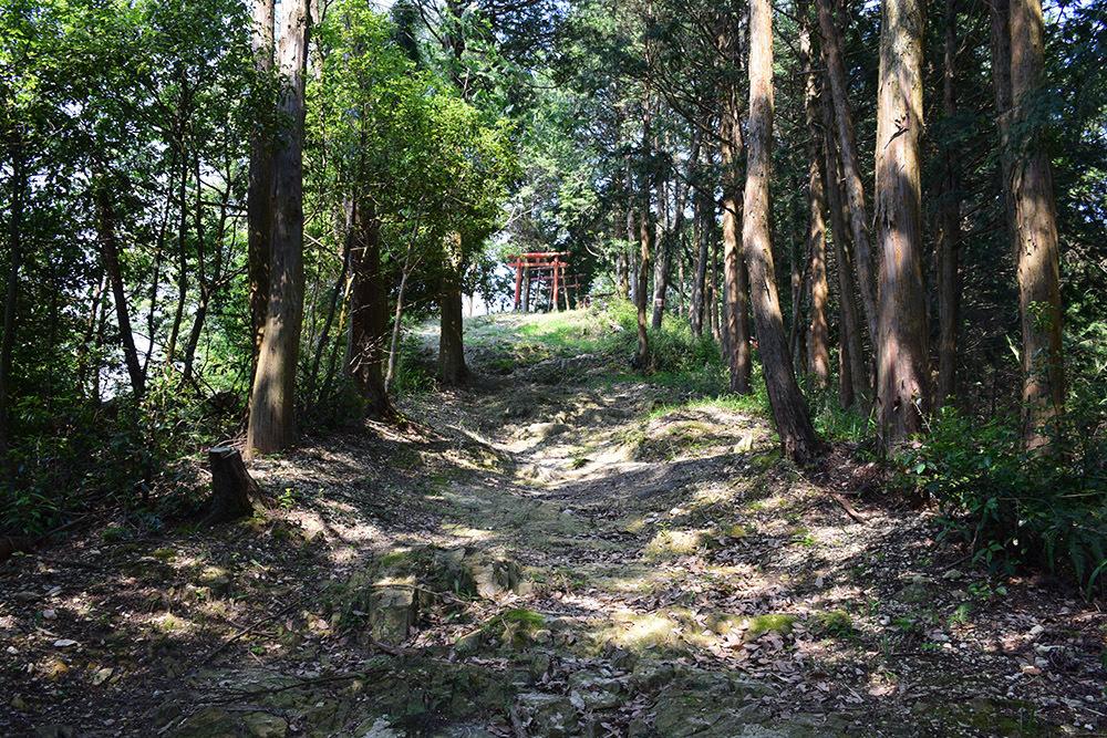 黒田官兵衛の生誕地と伝わる播磨黒田城跡を訪ねて。_e0158128_23173611.jpg