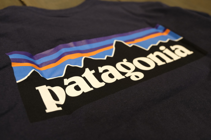 patagonia spring♪_d0126729_18364441.jpg