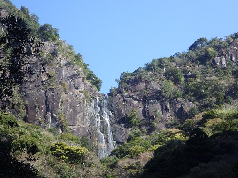 行縢山へ・・アケボノツツジとフジツツジ_e0164643_14143809.jpg